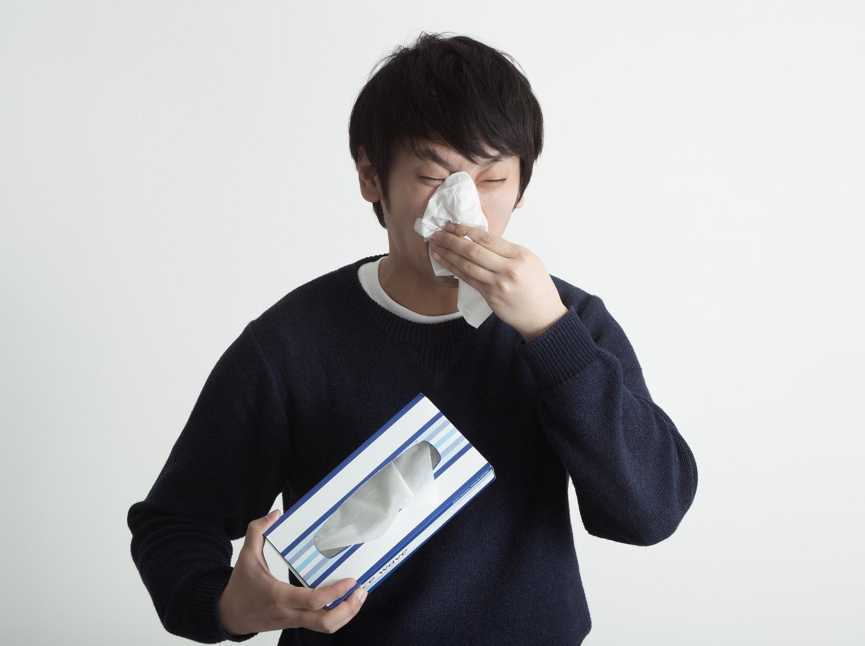 hay-fever-top