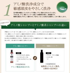 the mills エイジングケアセットアミノ酸シャンプー