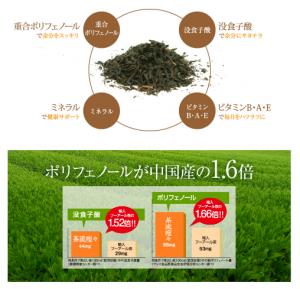 茶流痩々プーアール茶効果・効能