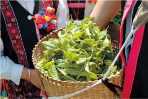 ティーライフダイエットプーアール茶中国