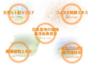 ALL-J 効果 日本製