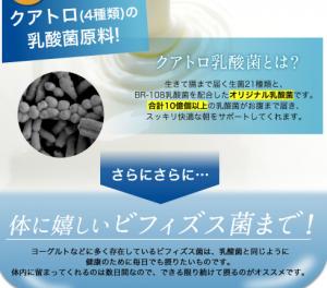 よくばりキレイの生酵素 効果 乳酸菌
