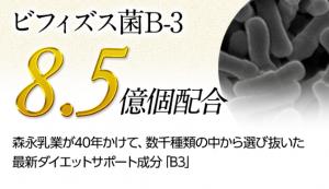 LAKUBI(ラクビ) 効果 ビフィズス菌B-3