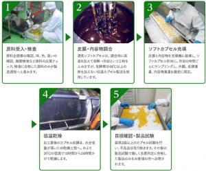 プレミアム生酵素357 乳酸菌プラス 効果 製造プロセス